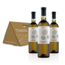THAYA dárkový box STŘECHA - bílá vína VOC Znojmo 2019 3×0